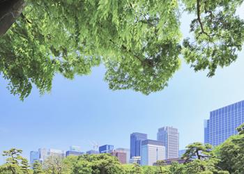 景観美化イメージ